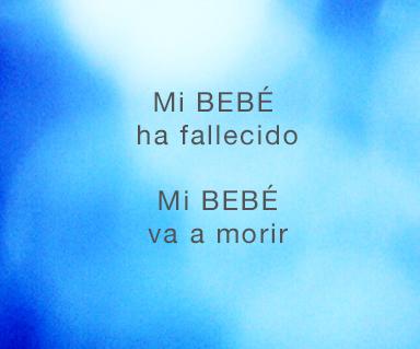 MI BEBE_4